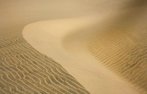 Sur les dune, Florence, OR. 2010.